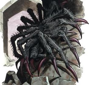 Half Spider Half Man  3