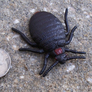 Rubber Lice Fleas Ticks And Mites