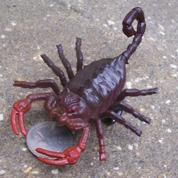 king scorpion the rock