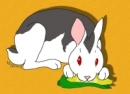 It's Bunnicula! What, you don't know who Bunnicula is? What ARE they making you read in school then?