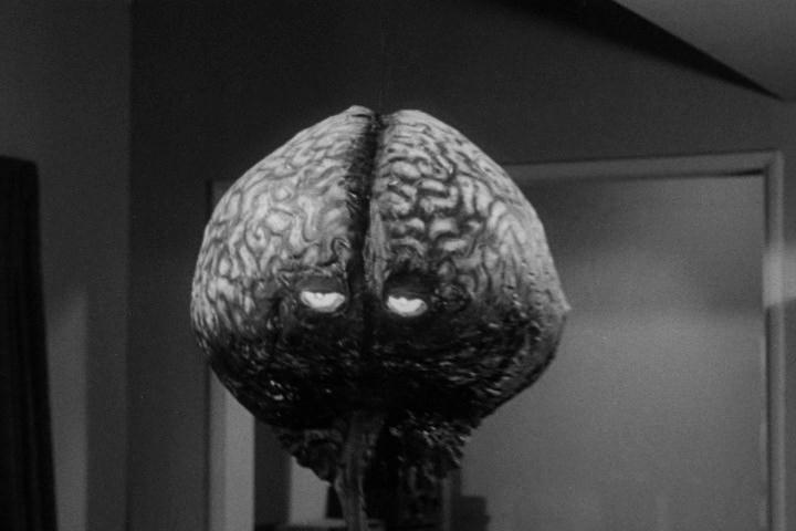 an evil brain for the insane essay