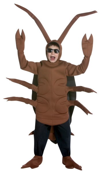 Cock man roach weather